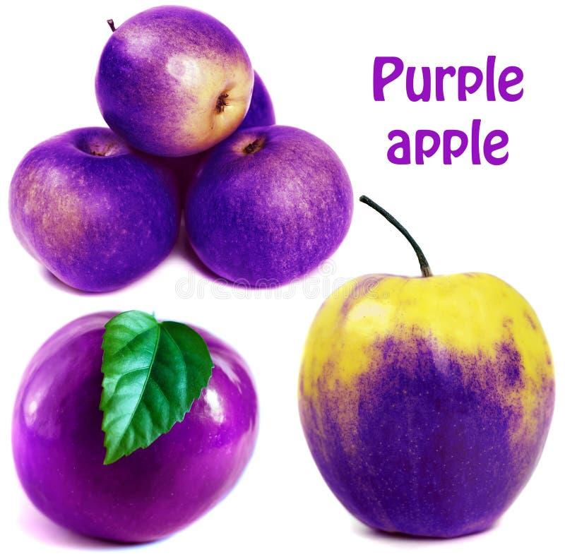 Purple apple stock photo