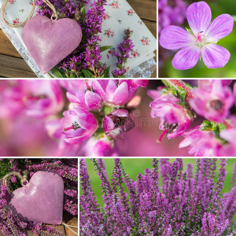 Download Purple autumn stock image. Image of valentines, text - 34456297