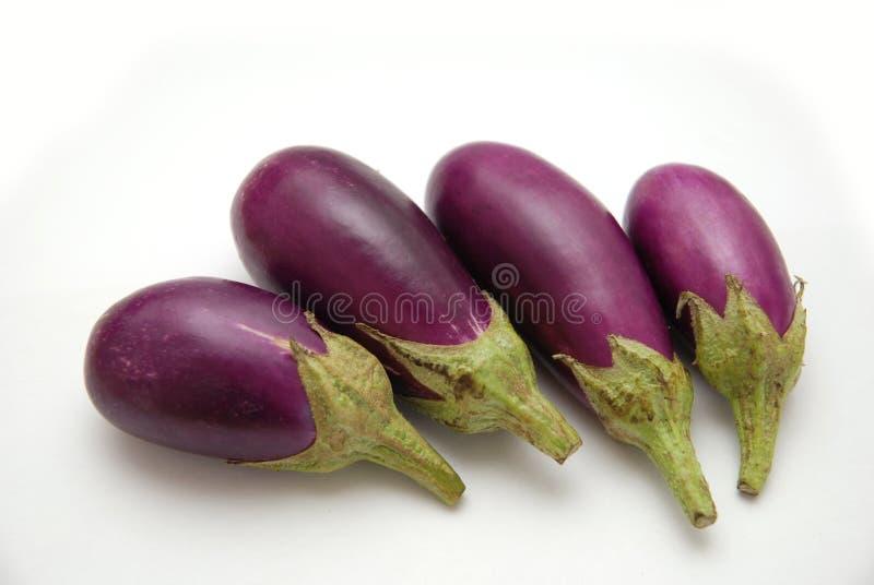 Download Purple Baby Eggplants stock photo. Image of ingredient - 9161702