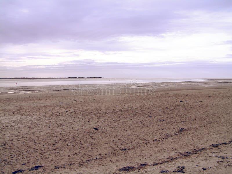 Download Purple Background stock image. Image of purple, dawn, twilight - 31183