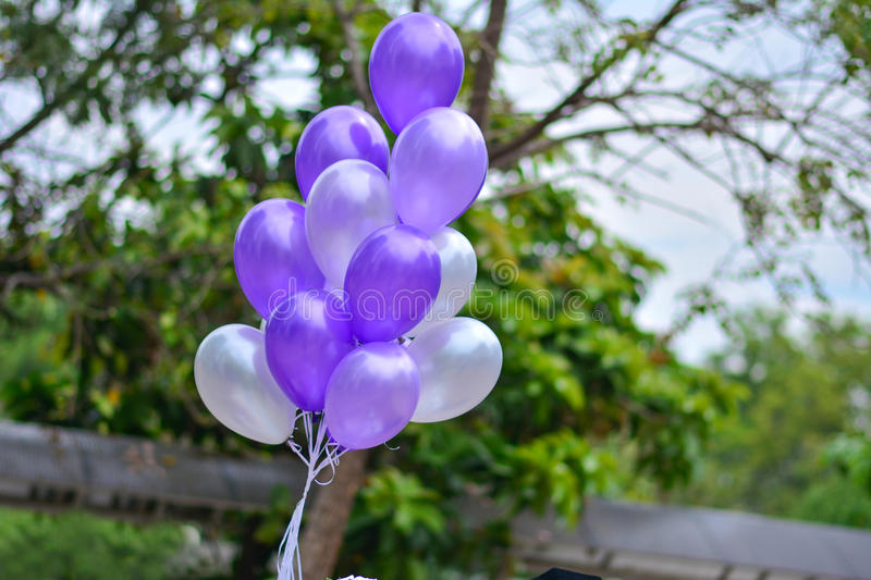 Purple balloons stock photos