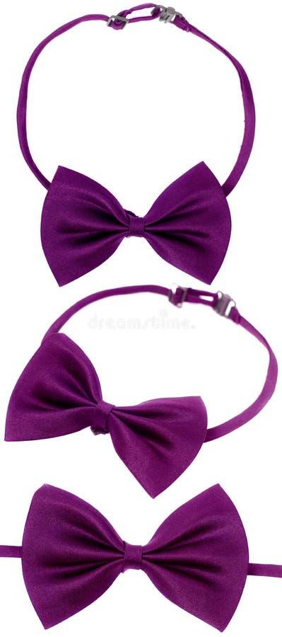 Purple bow-tie royalty free stock photos