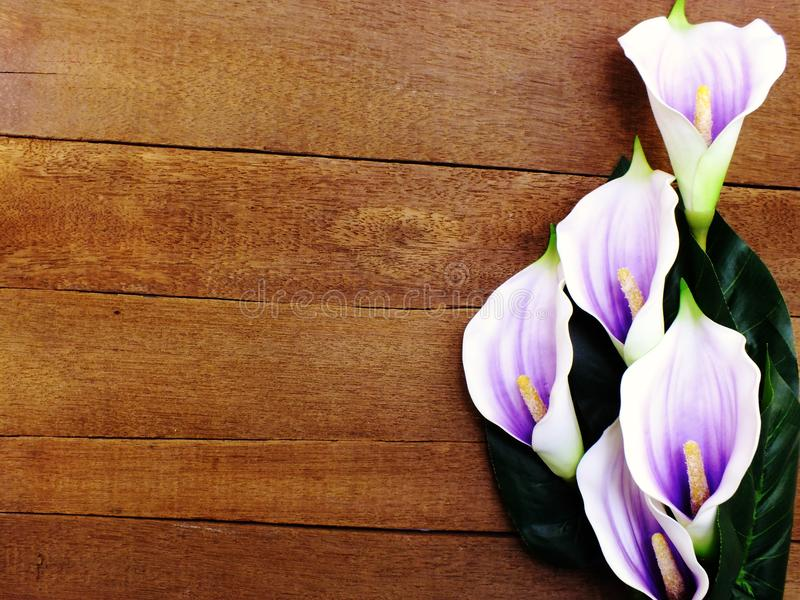 Purple calla lily bouquet with space on wooden background with filter color royalty free stock photos