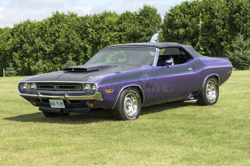 Purple challenger convertible. St-liboire august 8, 2015 front side view of purple dodge challenger ta convertible sitting on the grass during car show royalty free stock photos