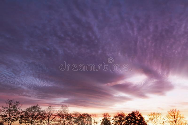 Purple clouds and winter tree line. Purple sunset over rural trees. Natural landscape stock images