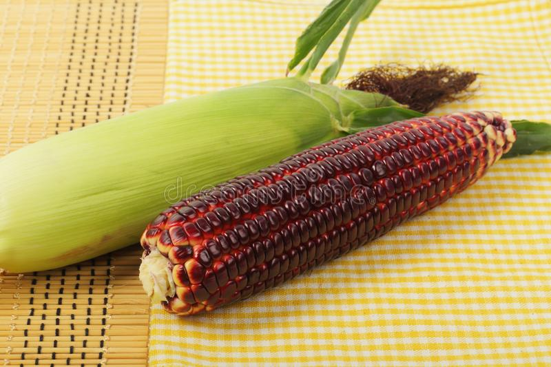 Purple corn fruits on napery royalty free stock images