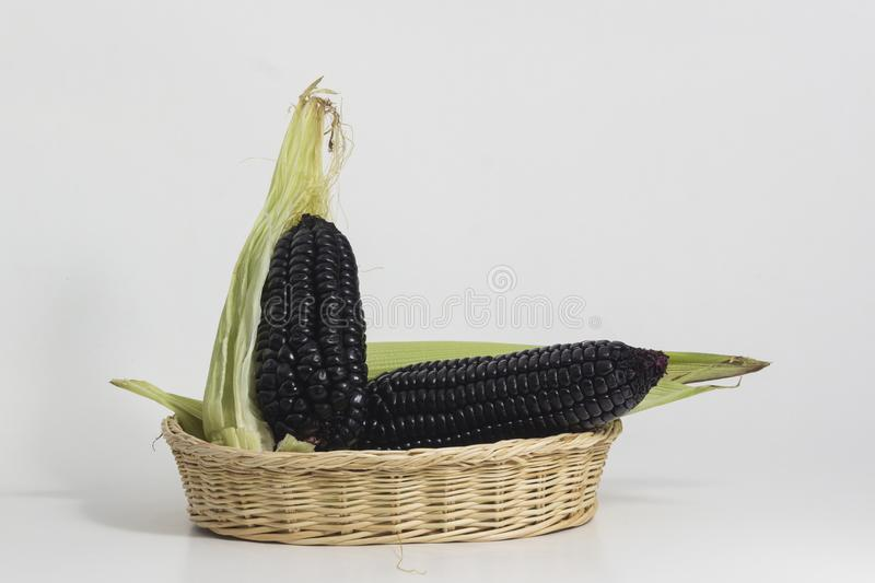 Purple corn still life. Purple corn is a typical ingredient of Peruvian food. When boiled in water, it produces a purple liquid rich in starch, which is called stock images
