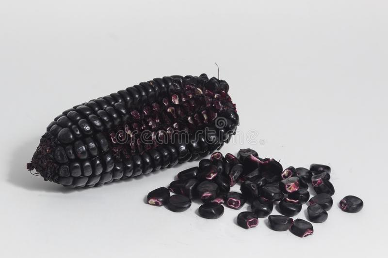 Purple corn still life. Purple corn is a typical ingredient of Peruvian food. When boiled in water, it produces a purple liquid rich in starch, which is called royalty free stock photography
