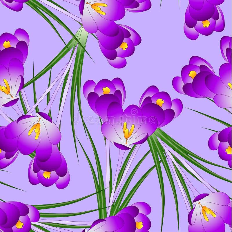 Purple Crocus Flower on Light Violet Background. Vector Illustration.  stock illustration