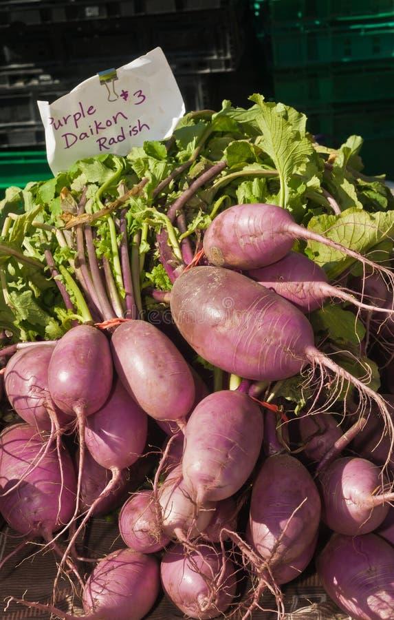 Purple daikon radishes for sale at tropical farmers market stock photos