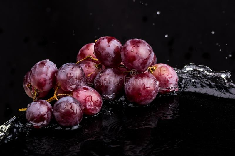 Purple dark close-up of grapes with a reflection on white and black background in a spray of water.  royalty free stock photos
