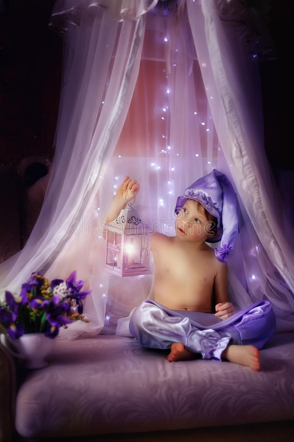 Free Purple Dreams Royalty Free Stock Images - 29138969
