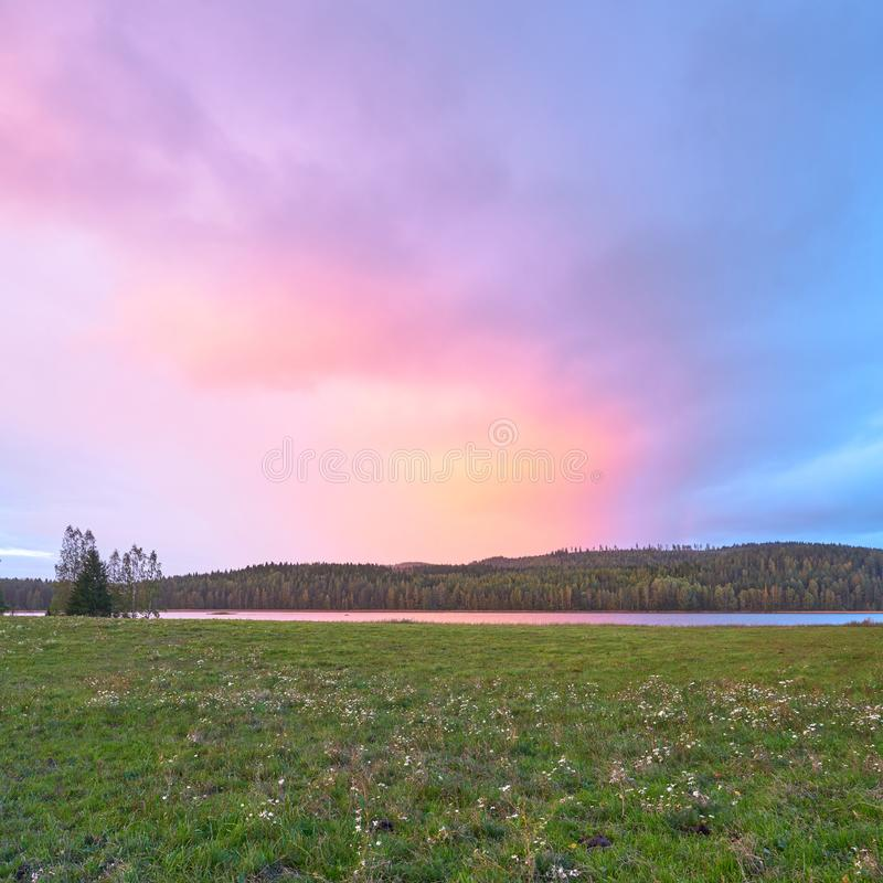 Purple Dusk. In the countryside stock images
