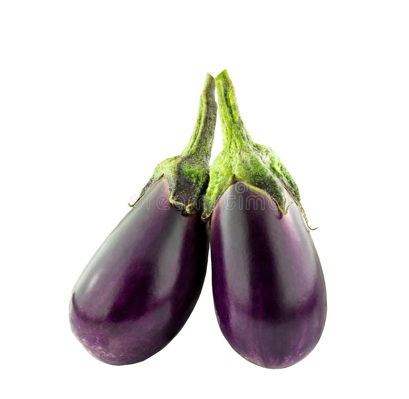 Purple eggplant, vegetables for cooking royalty free stock photography