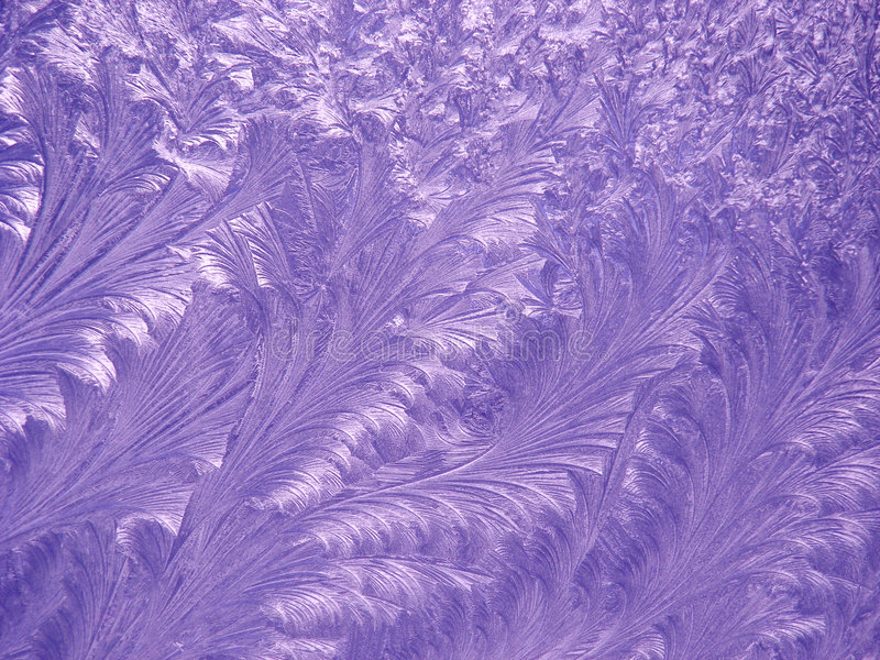 Purple Feathers. A frost pattern on a cold winter morning, redone in purple royalty free stock photos