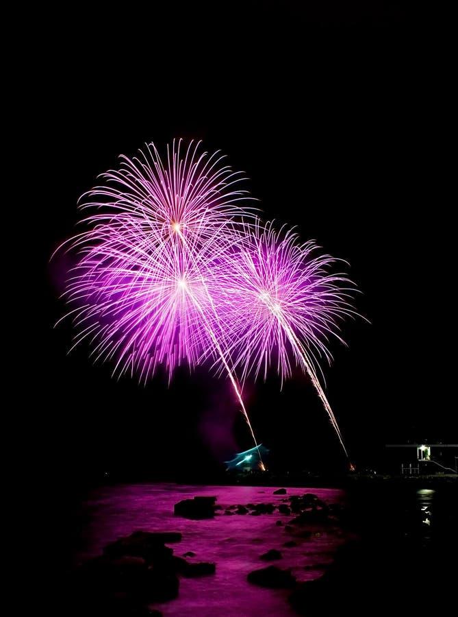 Purple fireworks stock images