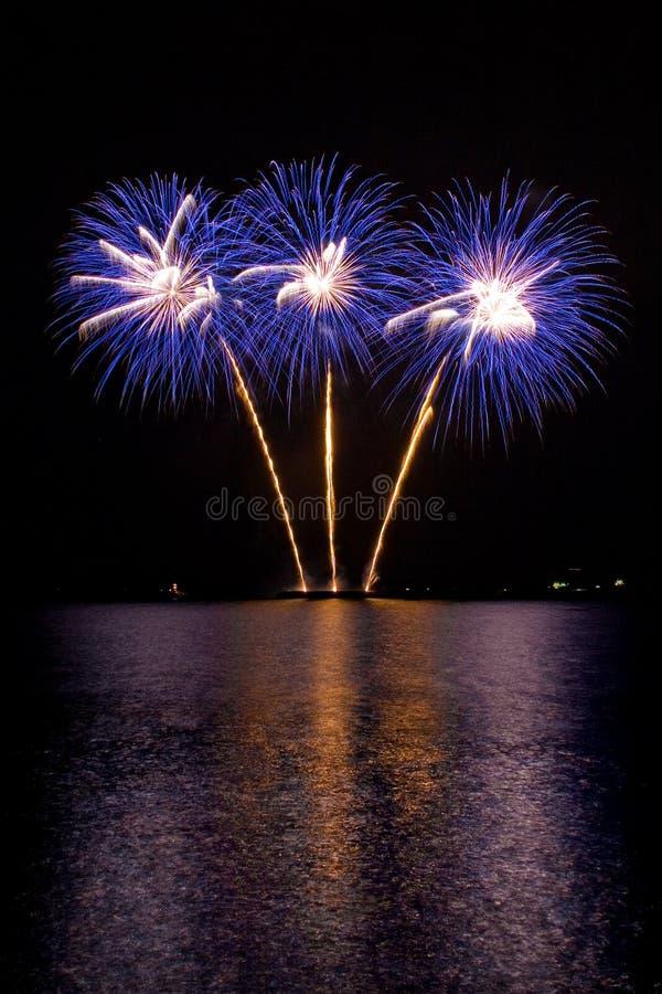 Purple Fireworks royalty free stock photo