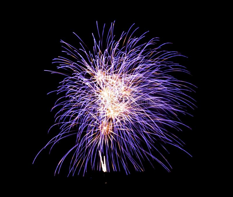 Purple fireworks in the sky. Purple and white fireworks exploding in the sky stock photos