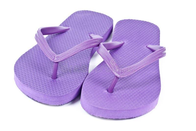Purple Flip Flops royalty free stock photo