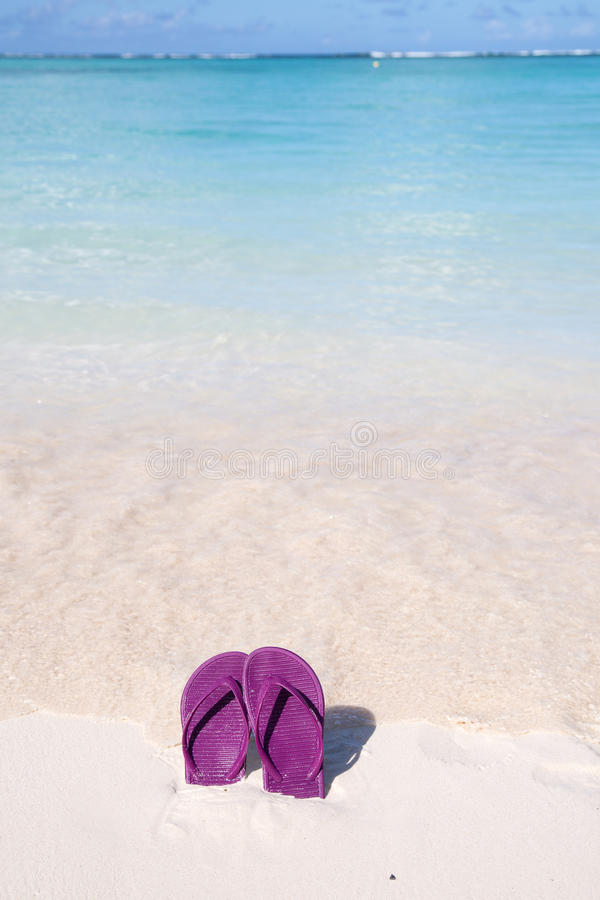 Purple flip flops on a tropical beach stock images