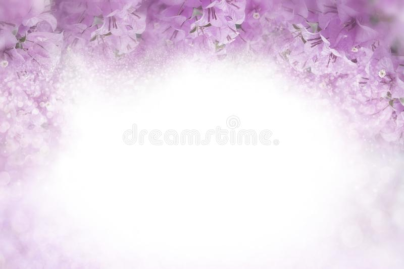 Purple flower Bougainvillea frame on soft pink background valentine and wedding card concept royalty free stock photography