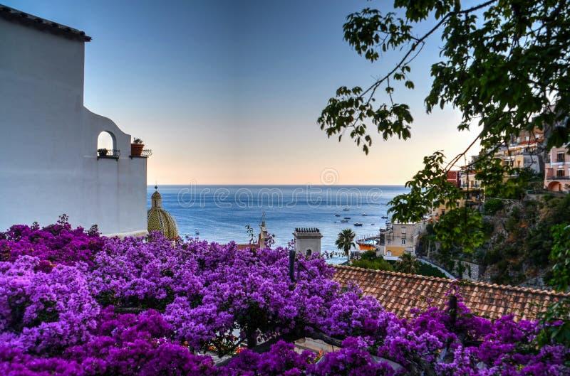 Purple Flower Lot stock photo