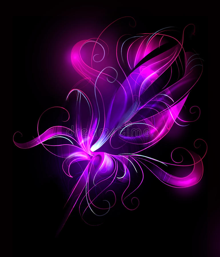 Purple flower over black background stock images