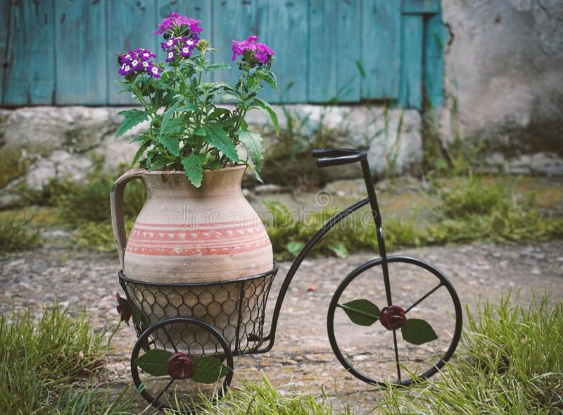 Purple flowers in a clay pot set on a bicycle, decoration for the garden royalty free stock photos