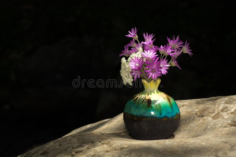 Purple flowers in the pot. On stone with black background stock photography