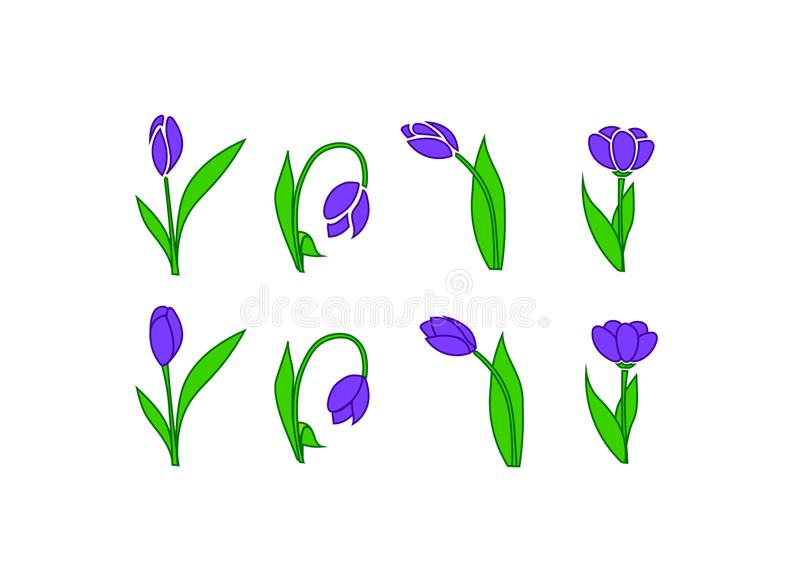 purple flowers on a white background vector model stock photography