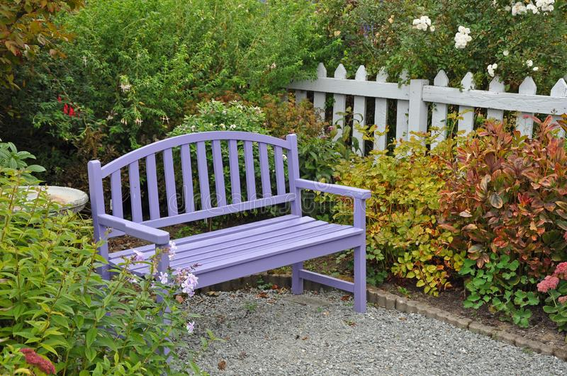 Purple garden bench on patio. Purple wooden garden bench on yard patio in summer stock images