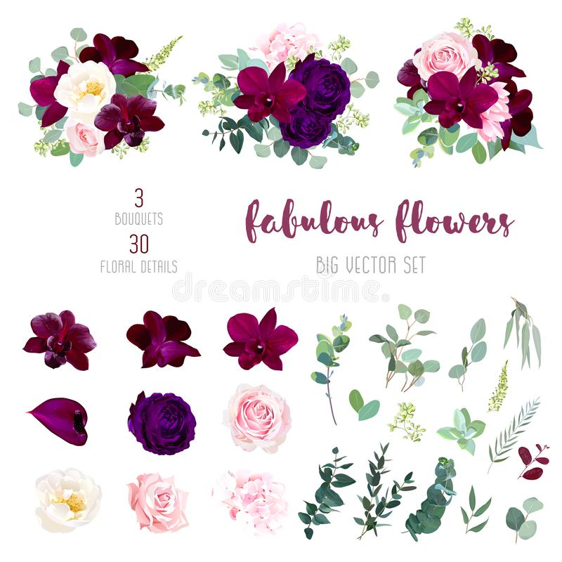 Purple garden rose, burgundy red orchid big vector collection vector illustration