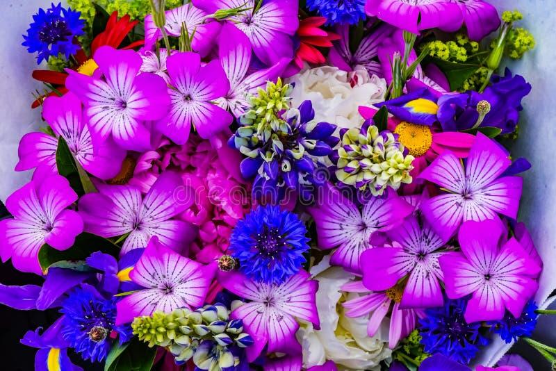 Purple Geraniums Blue Corn Flowers Iris Bouquet royalty free stock photo