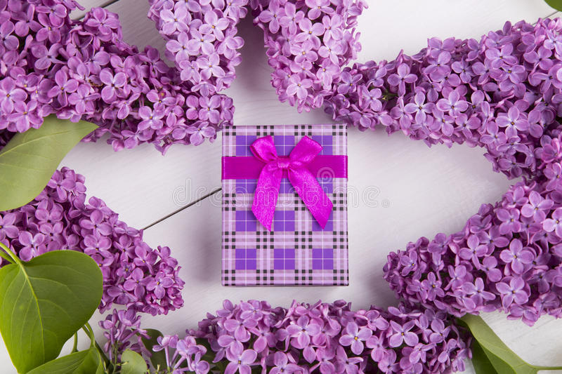 Purple gift box surrounded by lilac branches on white background.  royalty free stock images