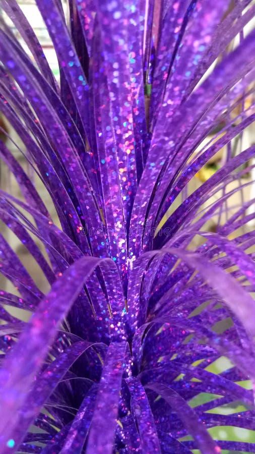 Purple glittering  beautiful leaves stock photo