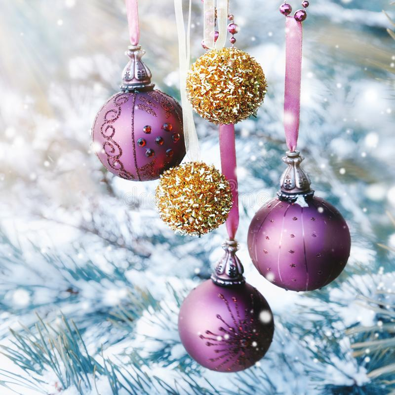 Purple and golden Christmas balls on a pine tree in snowy sunny weather, postcard, greeting royalty free stock photos