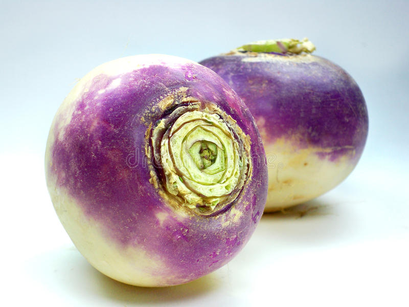 Download Purple Headed Turnips On White Background Stock Image - Image: 23393457