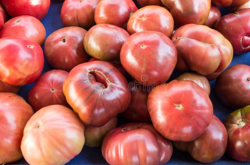 Purple heirloom tomatoes on display stock photos