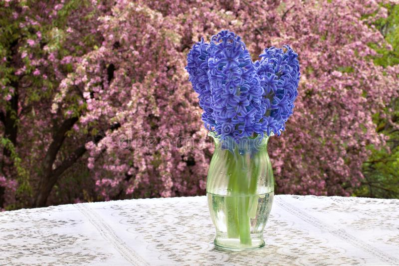 Purple Hyacinths, Lace Tablecloth and Blossoms