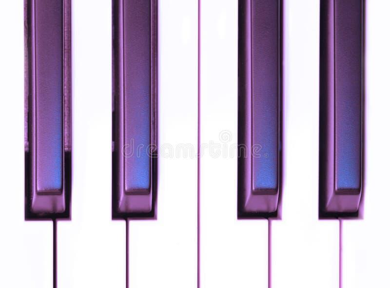 Purple Keys royalty free stock image