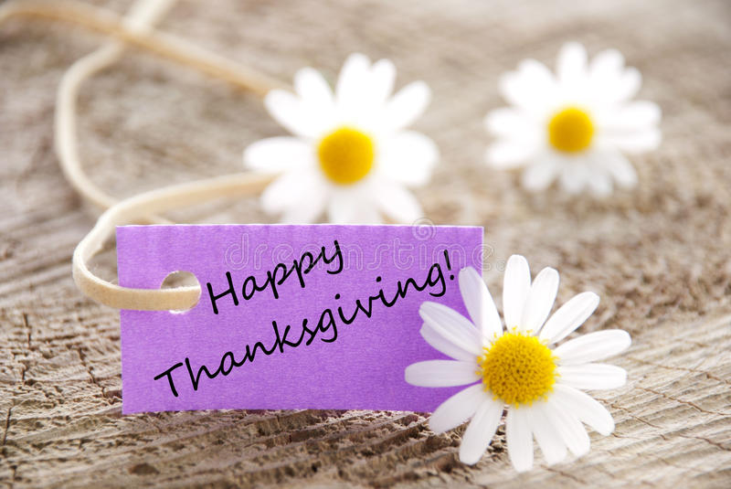 Purple Label with Happy Thanksgiving royalty free stock photos