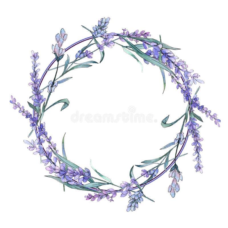 Purple lavender. Floral botanical flower. Wild spring leaf wildflower. Frame border ornament square. Purple lavender. Floral botanical flower. Wild spring leaf stock illustration