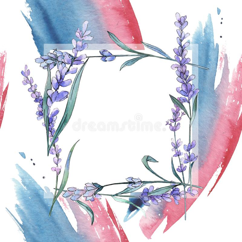 Purple lavender. Floral botanical flower. Wild spring leaf wildflower. Frame border ornament square. Purple lavender. Floral botanical flower. Wild spring leaf royalty free illustration