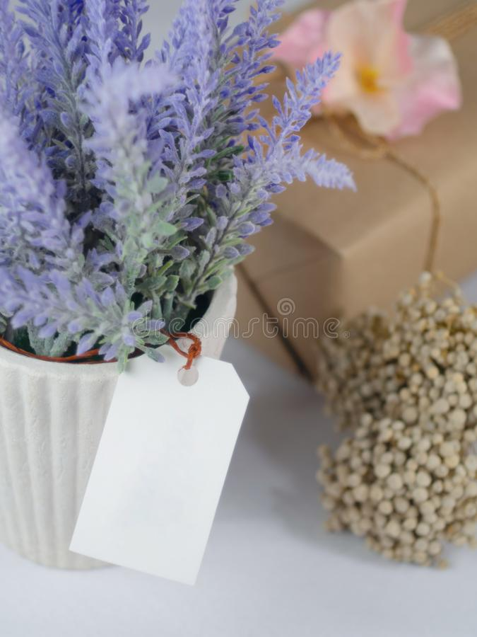 Purple lavender in white pots, with blank tag paper Placed beside flowers and gift boxes stock photos