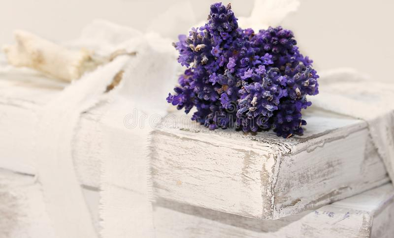Purple, Lilac, Flower, Flowerpot Free Public Domain Cc0 Image