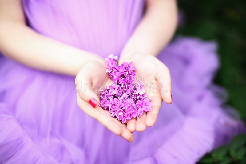 Purple lilac on the palm of a man, soft focus. Summer fragrant lilac flowers.  Purple flowers on the palm of the girl. Lilac in fe royalty free stock image