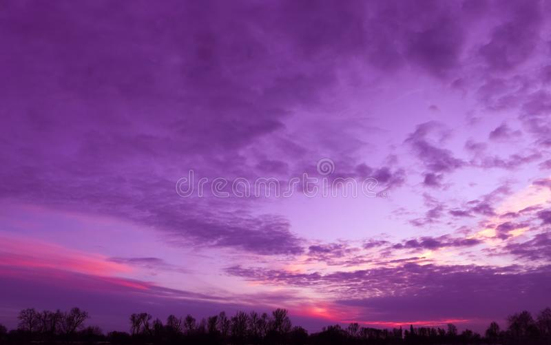 Purple, lilac, pink winter sky. Natural background from purple, lilac and pink sky. The view is sunset above dark skyline stock photos