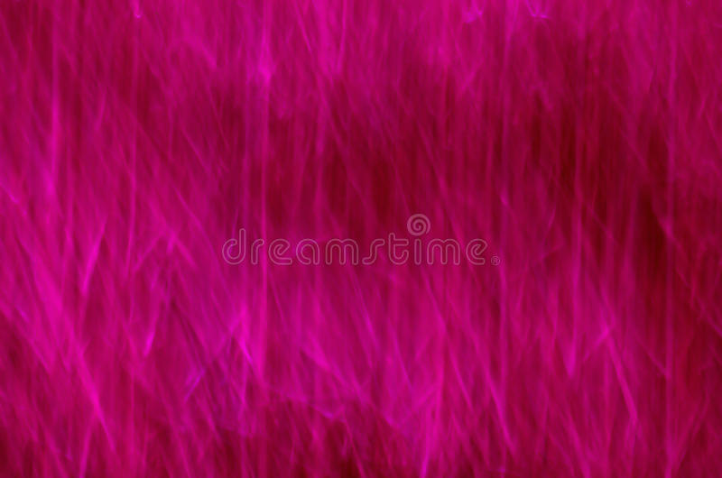 Purple lines. Red pink purple lights asi abstract colorful background vector illustration