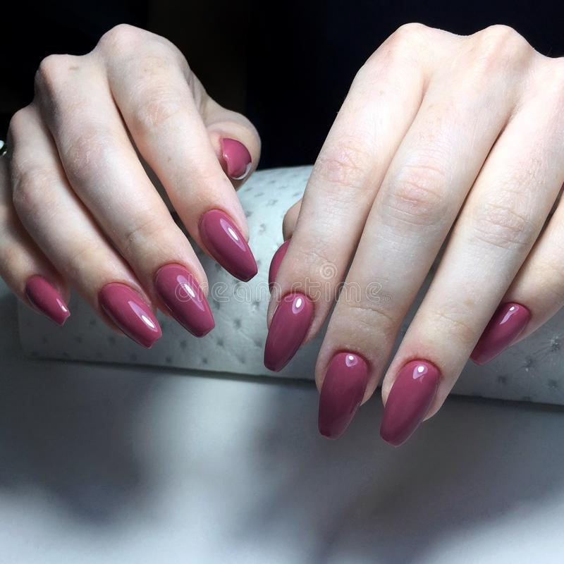 Purple manicure on the nails. Purple nail design on the fingers. Purple manicure on the nails. Purple nails design on the fingers. Manicure gel nail polish royalty free stock photos