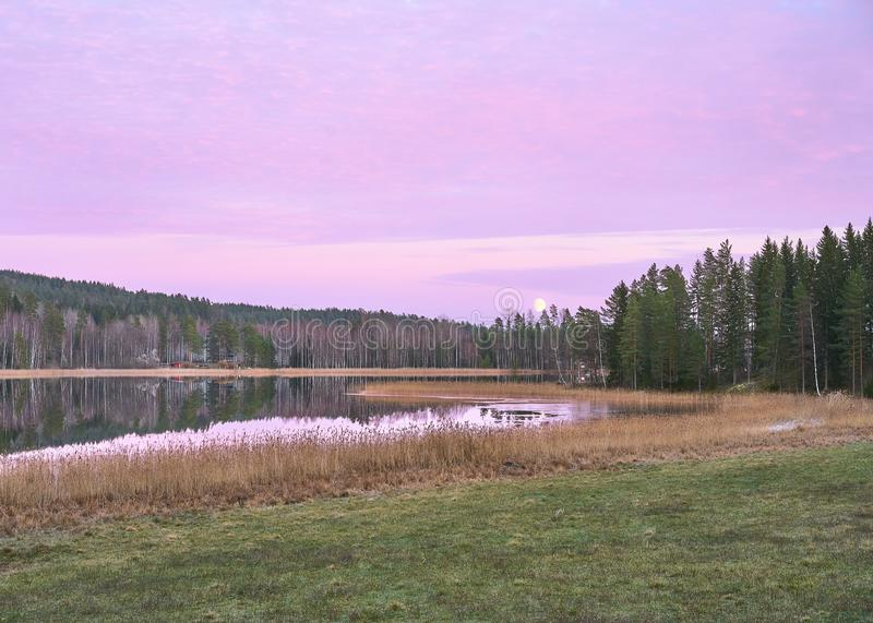 Purple Moonset. Moonset at the purple dusk of Finnish countryside. Fields and forests surrounding the lake stock image